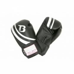 Booster Pro Range V2 Boxing Gloves