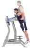 Hoist Bauch-/Dipstation Vertical Knee Raise Detailbild