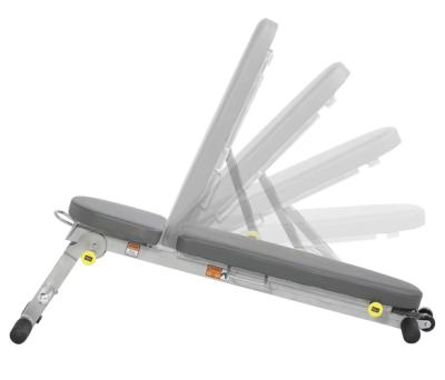 Hoist Weight Bench Hf4145 Buy With 15 Customer Ratings Sport Tiedje