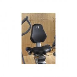 Octane Recumbent Bike XR6ce Detailbild