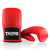 /taurus/boxing/taurus_light_u.jpg