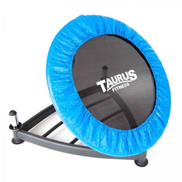 Taurus Ball Rebounder
