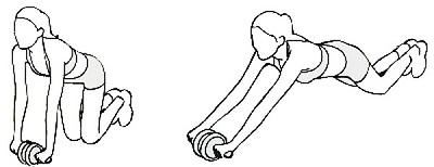 Taurus Bauchtrainer Wheel Exerciser für ein effektives Bauchtraining