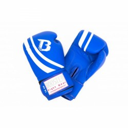 Booster Pro Range V2 Boxing Gloves
