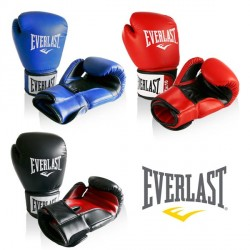 Everlast boxing glove Rodney