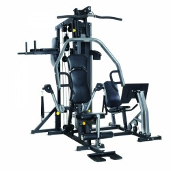 Horizon Torus 5 Multigym