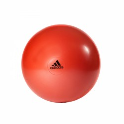 adidas Stability Gymball