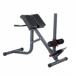 BodyCraft Back Trainer F670 purchase online now