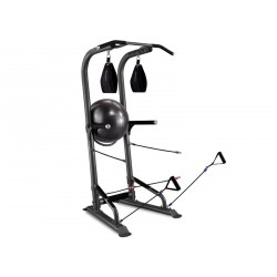 Bodycraft Lifetree T3 Power Tower purchase online now
