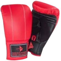 Wavemaster Boxing Gloves