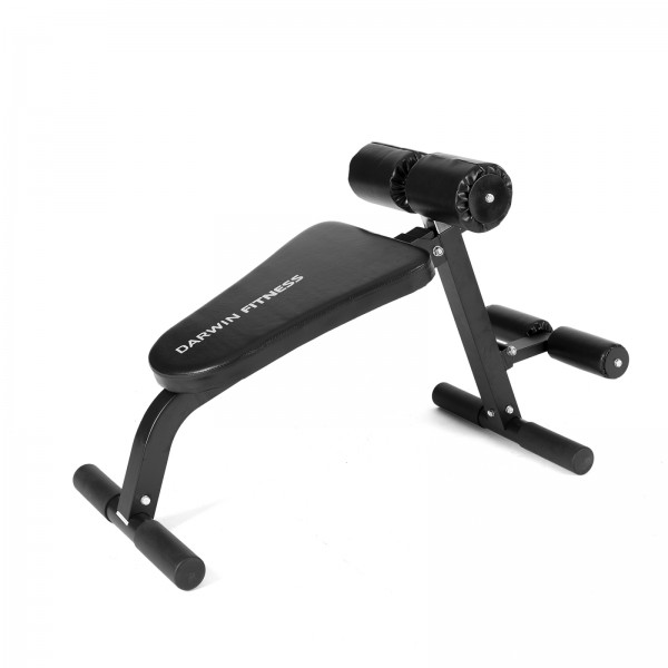 Darwin abs and back trainer