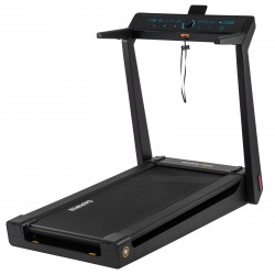 Darwin Treadmill TM30