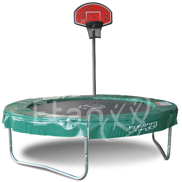 Etan basketball hoop TopShot Pass