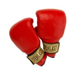 Guantes de Boxeo PVC Everlast Boston