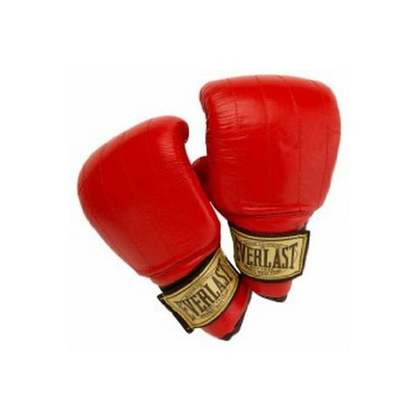 Everlast Boston Super Bag Gloves red
