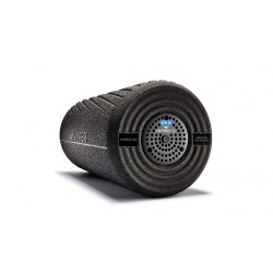 Hyperice fascia roller Vyper 2.0 purchase online now