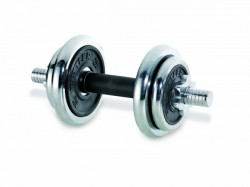 Kettler dumbbell set chrome purchase online now