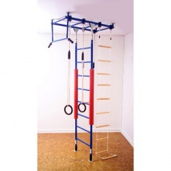 Climbing jungle gym set purchase online now