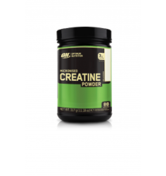Optimum Nutrition Micronized Creatine Powder acquistare adesso online