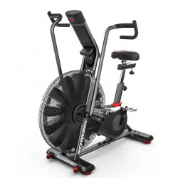 Schwinn fitness bike Airdyne AD8 purchase online now
