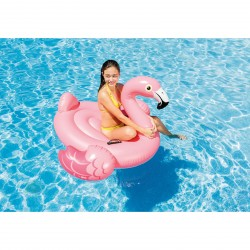 Intex RideOn Flamingo purchase online now