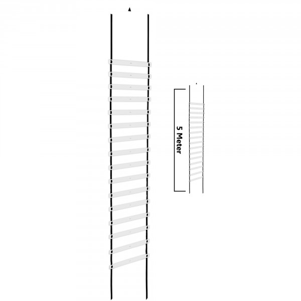 Taurus coordination ladder