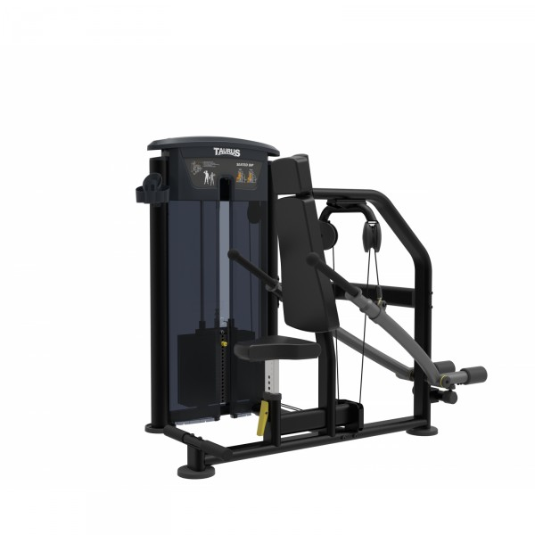 Taurus Tricep Dip Press IT95