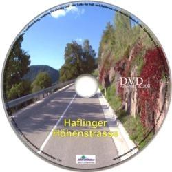 Vitalis FitViewer film Haflinger mountain road