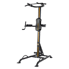 Power Tower / Body weight station