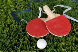 Zubehör - Tischtennisball, Tischtennisschläger und Tischtennisnetz